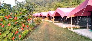 Luxy camp Rishikesh