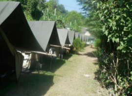 Jungle Camping 1 N 2 D Package